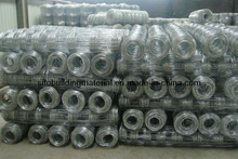 Field Fence/Grass Land Fence/Cattle Fence/Wire Mesh Fence/Animal Fence