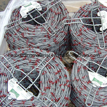 Barbed Wire/Barbed Wire Fence/Iron Barbed Wire/Galvanized Barbed Wire